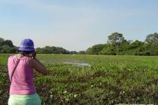 Pantanal Caminhada