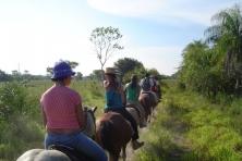 Pantanal Passeio de Cavalo