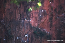 Buraco das Araras