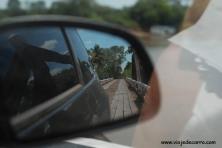 Pantanal Estrada Parque